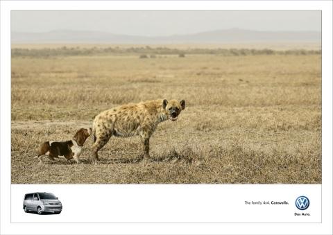 vw-hyena