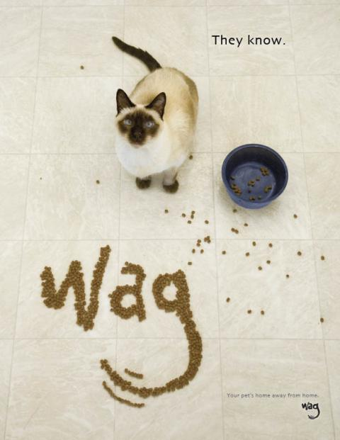 wag_cat_food